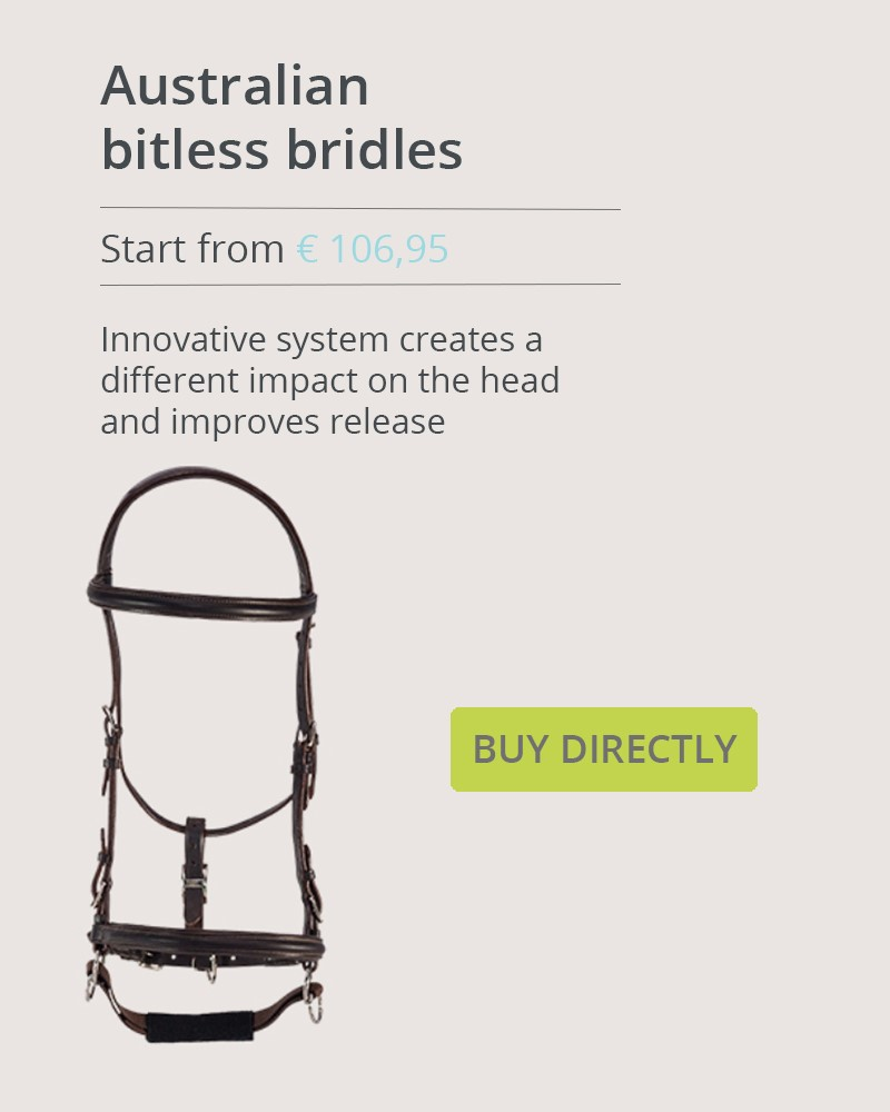 Banner for bitless bridles